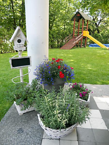 przedszkole-kwiaty
